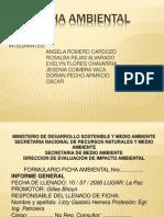 Ficha Ambiental Final