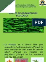 Niveles de Organizacion Ecologica
