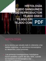 presentacion de exposicion de anatomia grupo 2 primero b.pptx