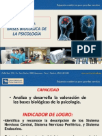 03 - Bases Biologicas Psicologia