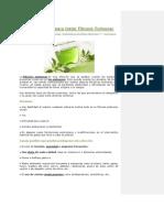 Plantas Curativas Para Tratar Fibrosis Pulmonar