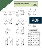 Triángulos Pitagóricos Exactos y Aproximados