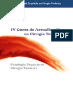 PROGRAMA IV Curso de Actualización en Cirugía Torácica 2013
