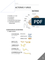Bacterias y Virus_Resumen