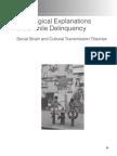 Sociological Explanations of Juvenile Delinquency