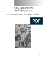 Sociological Explanations of Juvenile Delinquency