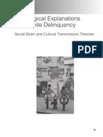 juvenile delinquency midterm essays juvenile delinquency  sociological explanations of juvenile delinquency