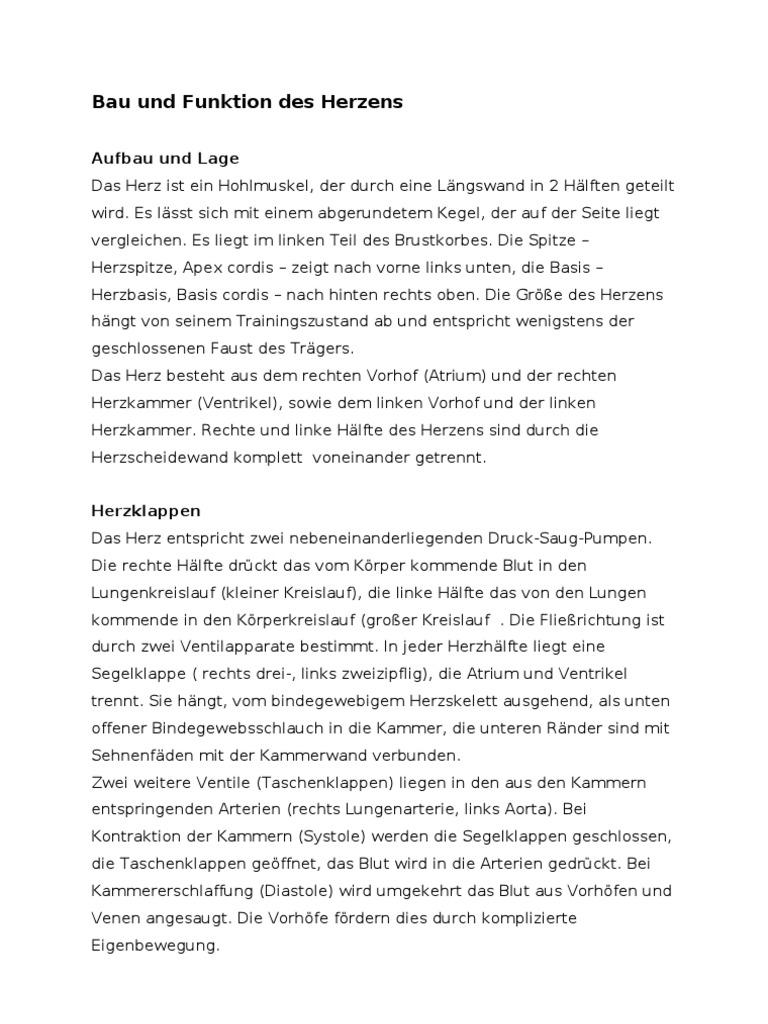 Tolle Rechten Vorhof Funktion Ideen - Menschliche Anatomie Bilder ...