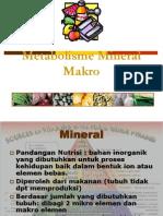 Metabolisme Mineral Makro