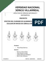 Efecto Del Alcl3 en La Division Celular a. Cepa