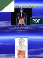 ER Sistema Digestório