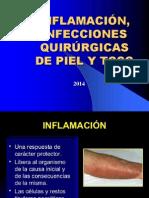 Inflamacion Completo