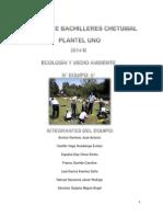 Proyecto Metodología y Ecología, completo.docx