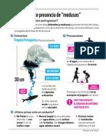 Infografia Fragata Portuguesa