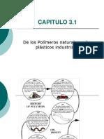 CAP.3.1 Polímeros Naturales 2012