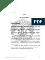 Digital 128192 R19 OM 166 Hubungan Konsentrasi Literatur