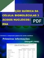 aula 4 ácidos nucléicos DNA e RNA