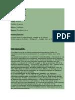 Clasificación científica eucalipto