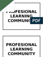 Profesional Learning Community - 2