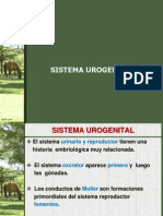 UROGENITAL (2)