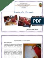 Diario de Jornada de Intervencion