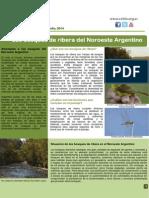 CEBio Boletín N°4. Los Bosques de ribera del NOA