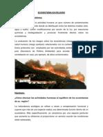 Ecosistema en Peligro