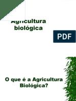 Agricultura Biologica Final
