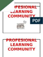 Profesional Learning Community - 4