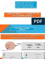 Organizacion Del Genoma Pregrado