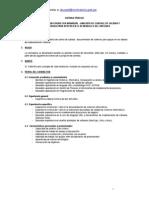 TDR Resumen