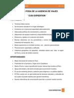 Análisis Foda de La Agencia de Viajes