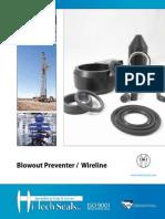 Blowout Preventer Wireline