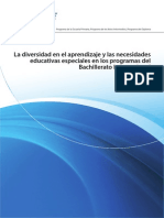 IBO NEE.pdf