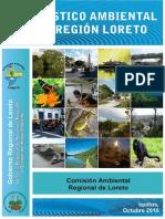 DIAGNOSTICO AMBIENTAL DE LA REGION LORETO