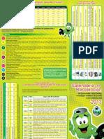Brochure+Escazu.pdf