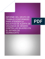 Informe AVGM Guanajuato Completa