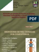 Dermatitis Urticariana x Insecto