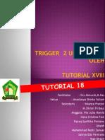 Trigger 2 Urogenital