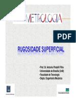 Rugosidade.pdf