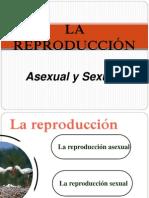 Secuencia Didactica Embrio
