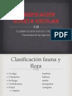 Clasificación Huerta Escolar