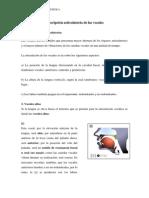 Descripción articulatoria de las vocales.pdf