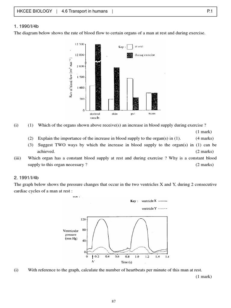 Bio 46 circulatory system blood ccuart Images
