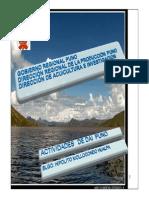 11 Avances Realizados en El Marco de La Implementación Del PNDA (Puno)