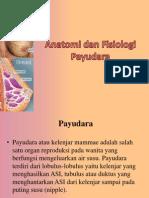 Anatomi Dan Fisiologi Payudara