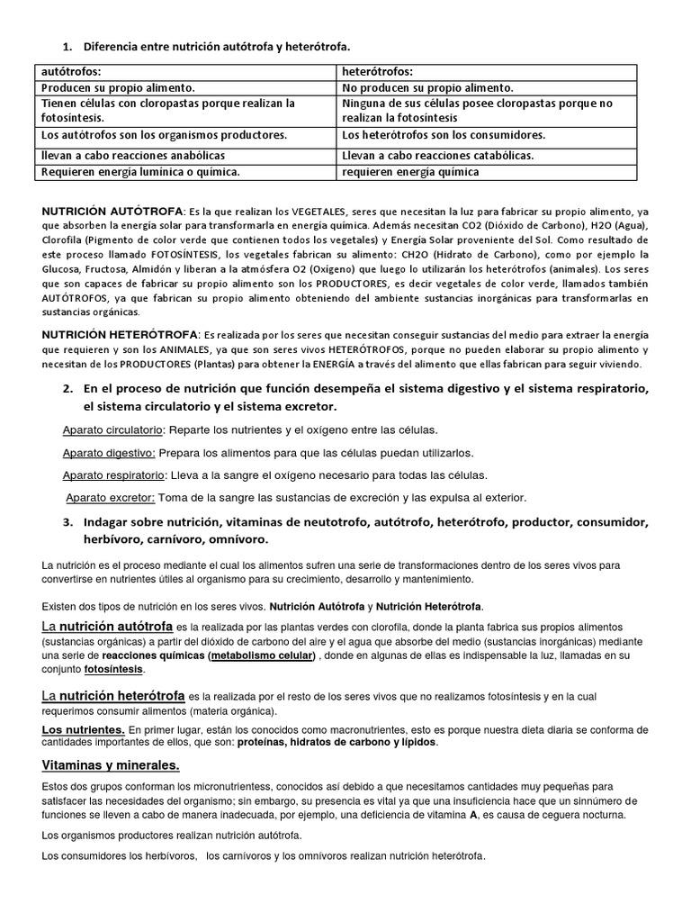 Diferencia Entre Nutrición Autótrofa Y Heterótrofa Nutrición Dieta Y Nutrición