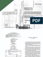 Dir Internacional Privado - Jacob Delinger