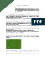 PRINCIPALES REGLAS DEL FUTBOL.docx