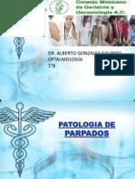 patologia de parpados.pptx